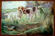 Редкая открытка.«На фазана» 1900 год.